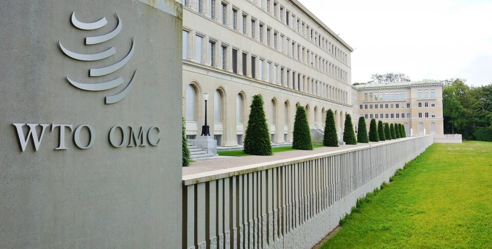 WTC OMC building garden